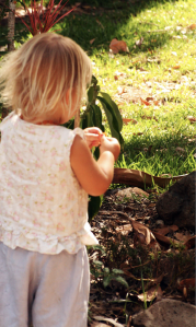 Children can discover so many things to do in nature